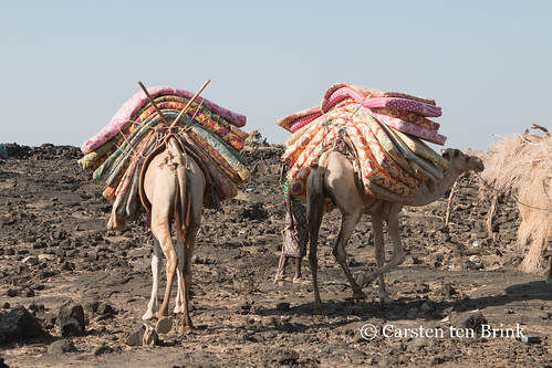 Sleeping mats and camels return from the crater