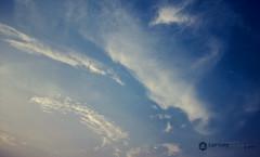 Cirrus Clouds (Everything has beauty, but not everyone sees it...) Tags: cirrusclouds sky clouds outdoor nikond3200 nikon d3200 nikkor1855mm 1855mm caputreaye imransphotos imrananwar pakistaniphotographer punjab lahore pakistan cloud