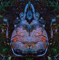 Knot Smile (rhonda_lansky) Tags: tree treeart knot woodknot smile face facial darkness creations nature design abstract abstractoutdoors outdoor mirroredshapes mirroredabstract mirrorart earth expressive lansky visual treeabstract rhondalansky httpswwwfacebookcomrhondalansky surreal fantasy organicpattern texture art poems shortstories storys writing creation earthart shapes abstractface natur outside