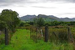Connemara Countryside (jameskirchner15) Tags: connemara galway countygalway hff fencefriday ireland fence mountain green scene landscape ~~fencefriday~~nottheoriginal pentax