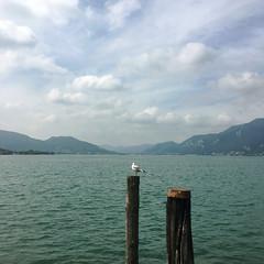 looking ahead (Paolo Cozzarizza) Tags: italia lombardia brescia iseo acqua lago lungolago panorama cielo pennuto