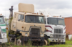 Retired International Transtar II and CO9070 cabovers (Thumpr455) Tags: truck semi tractor heavy machinery international intl ih cabover coe neglected abandoned co9070 junkyard nikon d800 afnikkor7300mmf4556vr