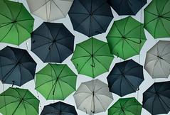 Umbrellas (cookwithchrisco) Tags: statefair texas umbrella umbrellas colors state fair