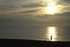 Early Riser (Rich Renomeron) Tags: olympusmzuiko1442mmf3556ez olympusomdem10 beach bethanybeach ocean