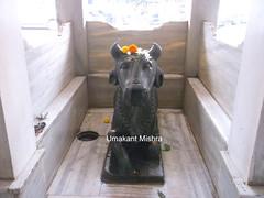 Bhaktidhama-Nasik-38 (umakant Mishra) Tags: bhaktidham bhaktidhamtemple bhaktidhamtrust godavaririver maharastra nashik pasupatinathtemple soubhagyalaxmimishra touristspot umakantmishra