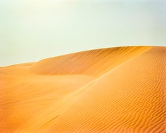 Dune Tops On Dune Top (Doha Sam) Tags: 160 4x5 analogue c41 chrome colorneg colorperfect crowngraphic desert dunes epsonv700 film fuji largeformat linearscan manualfocus negative pn160ns pacemakercrowngraphic piccure pro160ns qatar rawtherapee samagnew sand scan southerndesert summer wilderness iso160 smashandgrabphotocom wwwsamagnewcom