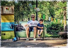 (Dale Michelsohn) Tags: portugal lisbon lisboa park books reading relaxing dalemichelsohn canon g5x jardimdaestrela