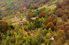 Autumn Time (marypink) Tags: valvigezzo piemonte valledeipittori autunno autumn fall colori colors nikond7200 nikkor80400mmf4556 foliage