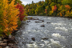 Androsoggin River (blackseal35) Tags: 2016 24105l androscogginriver canon canonti1 cooscounty errol fall nh newhampshire northwoods whitemountains c color colorful colors leafpeeping leaves mountains river roadtrip stream view water woods
