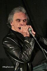 """Jerimiah Marques and the Blue Aces at the Heathlands Boogaloo Blues Weekend December 2014 • <a style=""""font-size:0.8em;"""" href=""""http://www.flickr.com/photos/86643986@N07/16155118452/"""" target=""""_blank"""">View on Flickr</a>"""