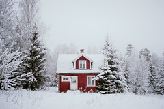 Lonely days (elias hermansson) Tags: winter snow fog empty redhouse oldhouse weathered desolate belowzero