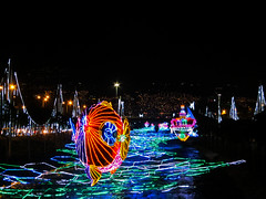 Fish in river (beeffaucet) Tags: christmas lights colombia medellin
