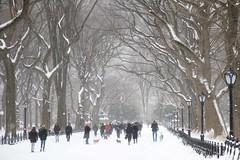 Central Park after Juno snowstorm (LeeHoward) Tags: snow newyork centralpark manhattan snowstorm blizzard juno 2015 bruegel