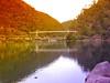 ALEXANDER SUSPENSION BRIDGE (Rose Frankcombe) Tags: reflections australia tasmania launceston firstbasin cataractgorgereserve rosefrankcombe alexandersuspensionbridge