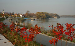 Szentendre in November (elinor04 thanks for 22,000,000+ views!) Tags: old november autumn light sunset fall river town hungary duna danube szentendre