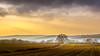 The farm (Adelino Goncalves) Tags: winter light england cold color nature beautiful canon landscape vibrant gloucestershire 6d ericgoncalves