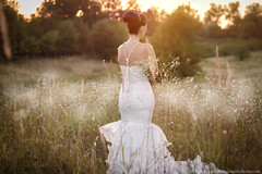 sunset (olgazemlyakova) Tags: flowers wedding sunset summer woman love beauty field daisies groom bride bouquet hairstyle 50mm18 canon650d ef50mmf18i canoneoskissx6i olgazemlyakovaphotographer