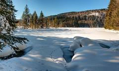 vosges, lispach (chicos54) Tags: nature landscape lac paysage lorraine vosges glace vogezen lacgel tourbire lispach hautesvosges lacdelispach paysagevosgien
