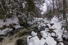 White Water vs Winter (awaketoadream) Tags: park winter white snow ontario canada water river december rapids algonquin madawaska provincial