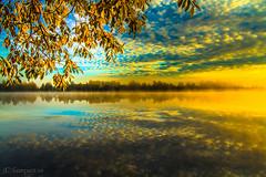 soluppgng vindellven (johan.bergenstrahle) Tags: morning autumn oktober reflection sunrise landscape october hst morgon landskap vindellven spegling 2013 vnns finepics