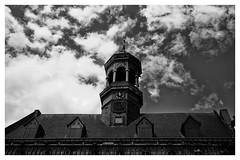 Htel de Ville (Gretsch*) Tags: blackwhite belgium belgique mons noirblanc leicasummicron35mmf20asph leicam240