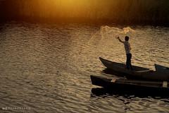 Fishing (PeymanTDR) Tags: light sun evening fishing gilan    bandare    kiashahr