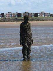 DSCF0683 (SierPinskiA) Tags: sea shells beach liverpool sand ironman pools barnacles ironwork mayday seashore merseyside anthonygormley irishsea 2016 anotherplace crosbybeach blundellsands fujixs1