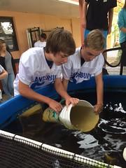 Canterbury School of Florida (MyFWC Research) Tags: aquaculture hatchery fishhatchery stockenhancement school education outreach portmanatee florida fwc myfwc myfwccom