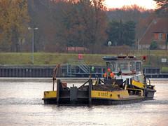 Finn mit Birke (Parchimer) Tags: schubboot pushboat towboat pousseur pchacz duwboot spintore empurradorfluvial binnenschiff tolómotorhajó pushertug dahmewasserstrasse königswusterhausen