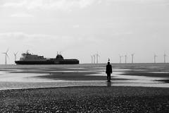 Seagull (tobymeg) Tags: liverpol crosby beach ferry turbines sea sand ship sky seagull