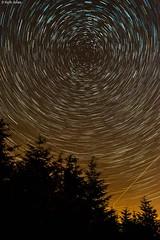 Star trails above Tonypandy (photoguy 2005) Tags: startrails stars sky night trees tonypandy rhondda wales lightpollution