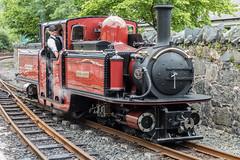 Fairlie's Patent (ClydeHouse) Tags: rheilfforddffestiniog doublefairlie engine fairliespatent byandrew davidlloydgeorge railway blaenauffestiniog steamengine ffestiniograilway steamlocomotive