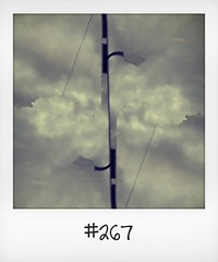 """#DailyPolaroid of 21-6-16 #267 • <a style=""""font-size:0.8em;"""" href=""""http://www.flickr.com/photos/47939785@N05/28905760766/"""" target=""""_blank"""">View on Flickr</a>"""