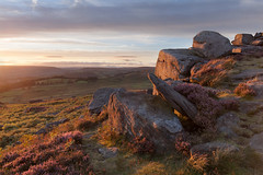 Over Owler Tor Sunset (Paul Newcombe) Tags: peakdistrict overowlertor england peaks british countryside landscape heather august uk gb derbyshire nationalpark britnatparks canon1535f4l paulnewvombephotography bloom flower sidelight sunset rocks gritstone moorland moors hathersage