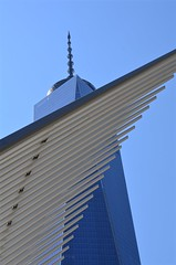 Wing Against Freedom Tower (pjpink) Tags: wing freedomtower architecture manhattan nyc newyork newyorkcity ny june 2016 summer pjpink