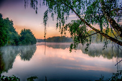 Tree (Florian Grundstein) Tags: lake mirror reflection water nature sunrise landscape natural birch sunset nikon nikkor landschaft natur baum birke sonnenaufgang morgenlicht see spiegelung wasser oberpfalz teublitz daheim heimat upperpalatinate bavaria germany europe beautiful wallpaper