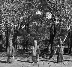 at Tu Duc's tomb (SM Tham) Tags: park tomb statues unescoworldheritagesite vietnam mausoleum hue tuduc