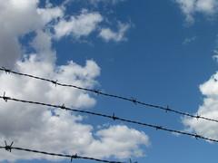 Barbed Wire - Arame Farpado (@MASlivak ) Tags: blue sky azul wire céu barbed arame farpado