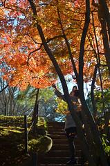 Selfies (malinowy) Tags: winter japan 35mm temple nikon buddhist nippon nikkor zima narita naritasan honshu shingon japonia swiatynia malinowy d7000 shinshōji malinowynet