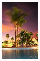 Palmiers (S!re@L) Tags: pose vacance palmier piscine longue