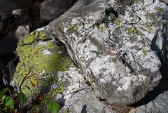 Mossy Rocks (mike_jacobson1616) Tags: sky mountain mountains water nationalpark rocks turquoise wilderness peaks tetons alpinelake grandteton tetonrange grandtetonnationalpark taggartlake avalanchecanyon taggartlaketrail