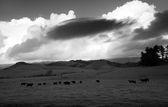 Storm Approach II (Joe Josephs: 2,650,890 views - thank you) Tags: california landscape fineart californiacoast blackandwhitephotography travelphotography landscapephotography outdoorphotography nikond810 joejosephs joejosephsphotography nikon24120vrii copyrightjoejosephs2015 joejosephs2015