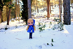 Blythe in the snow