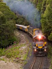 Farrell (timcooper3) Tags: train rail railway tasmania tasrail
