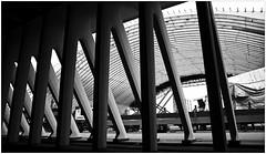 Travaux pour la construction de la nouvelle gare des Guillemins (01/12/2006), Lige, Belgium (claude lina) Tags: station architecture belgium belgique gare trains rails santiagocalatrava travaux constructions lige wallonie provincedelige garedesguilleminslige