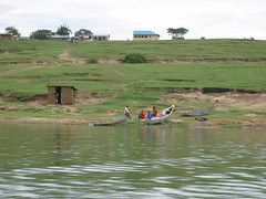 Canoes in QENP