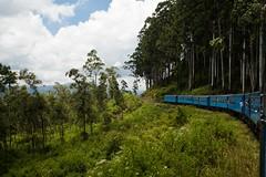 At the train (AmiskhyykkyMedia) Tags: travel nature tea ella trains sri lanka waterfalls tuktuk kandy doha amiskhyykkymedia