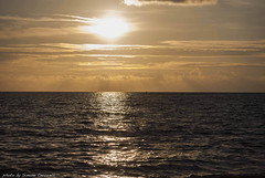 (Simone Cervarelli) Tags: santa winter sea italy nature water sunshine march reflex nikon italia tramonto mare natura inverno marzo paesaggio santasevera 2015 d3000