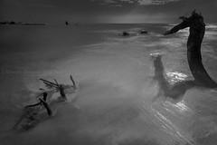 Sea Monster (Giorgio Chessari) Tags: from sea seascape monster long exposure 9 nikkor giorgio 500px irminio 1424mm prostop chessari