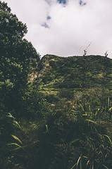 Karekare (DeepLovePhotography) Tags: newzealand karekarebeach deeplovephotography seanhelmn